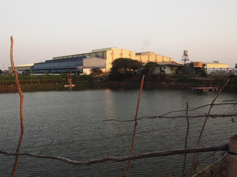 Vùng nuôi, chế biến thức ăn thủy sản, Nhà máy sản xuất gạo, cầu cảng và kho trữ lương thực xuất khẩu Tấn Vương